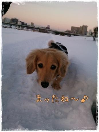 misoka.JPG